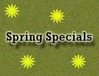 Winter Specials